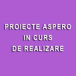 Proiecte Aspero in curs de realizare